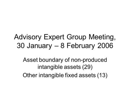 Advisory Expert Group Meeting, 30 January – 8 February 2006 Asset boundary of non-produced intangible assets (29) Other intangible fixed assets (13)
