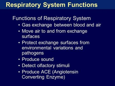 Respiratory System Functions Functions of Respiratory System Gas exchange between blood <strong>and</strong> air Move air to <strong>and</strong> from exchange surfaces Protect exchange.