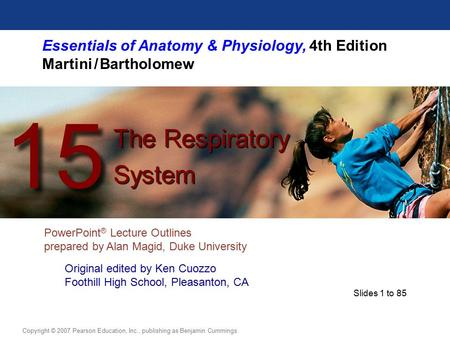 Essentials of <strong>Anatomy</strong> & <strong>Physiology</strong>, 4th Edition Martini / Bartholomew PowerPoint ® Lecture Outlines prepared by Alan Magid, Duke University The Respiratory.