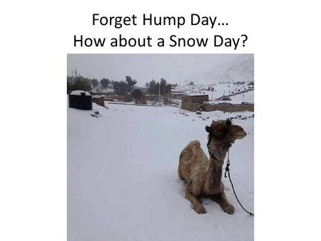 "Forget Hump Day… How about a Snow Day?. Roman Republic ""Rome Wasn't Built in a Day"""
