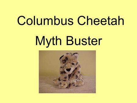 Columbus Cheetah Myth Buster. Myth 1 There are NO gifted ones.