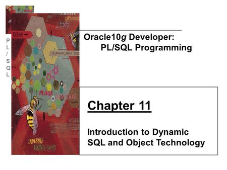 PL/SQLPL/SQL Oracle10g Developer: PL/SQL Programming Chapter 11 Introduction to Dynamic SQL and Object Technology.
