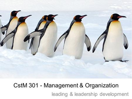CstM 301 - Management & Organization leading & leadership development.
