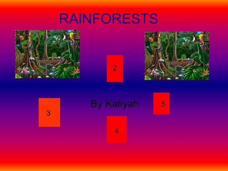 RAINFORESTS By Kaliyah 2 3 4 5. WHAT IS A RAINFOREST? A Rainforest is a island for different types of animals and people or sibling to live. With definitions.