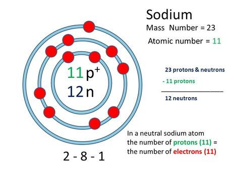11 12 Sodium Atomic number = Mass Number = 2 - 8 - 1 p+p+ n 23 11 23 protons & neutrons 12 neutrons In a neutral sodium atom the number of protons (11)