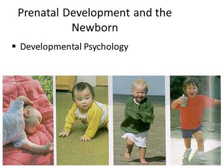 Prenatal Development and the Newborn  Developmental Psychology.