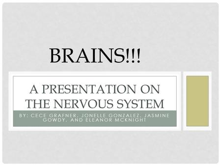 BY: CECE GRAFNER, JONELLE GONZALEZ, JASMINE GOWDY, AND ELEANOR MCKNIGHT A PRESENTATION ON THE NERVOUS SYSTEM BRAINS!!!