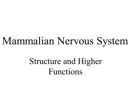 Mammalian Nervous System Structure and Higher Functions.