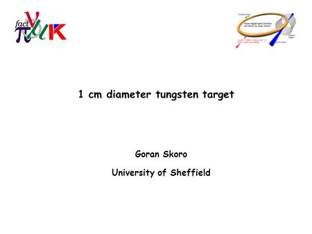 1 cm diameter tungsten target Goran Skoro University of Sheffield.
