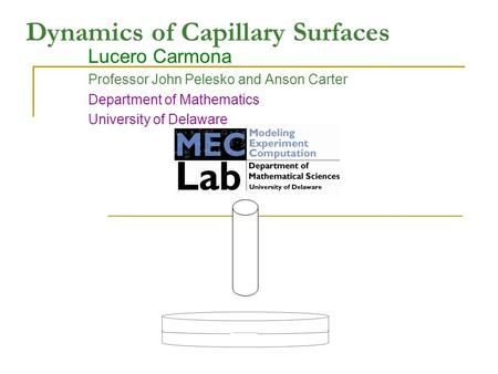 Dynamics of Capillary Surfaces Lucero Carmona Professor John Pelesko and Anson Carter Department of Mathematics University of Delaware.