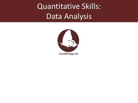 Quantitative Skills: Data Analysis. Data analysis is one of the first steps toward determining whether an observed pattern has validity. Data analysis.