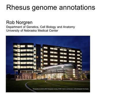 Rhesus genome annotations Rob Norgren Department of Genetics, Cell Biology and Anatomy University of Nebraska Medical Center.