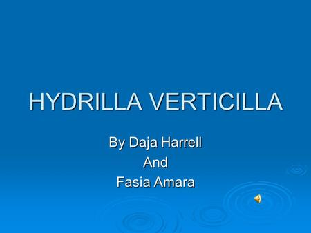 HYDRILLA VERTICILLA By Daja Harrell And Fasia Amara.