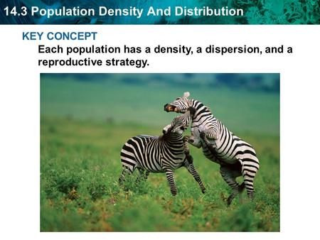 Population density is a measurement of the number of individuals living in a defined space.