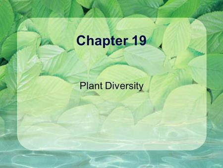 Chapter 19 Plant Diversity. 19.1 Land plants evolved from green algae Origins of Plants from Algae Charophytes Modern charophytes found in shallow fresh.