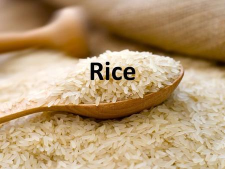 Rice. Types of Rice Brown Rice – The whole grain form of rice. Instant Rice – Precooked and then dehydrated.
