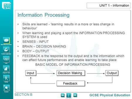 GCSE Physical Education Information/Discussion Practical Application Links Diagram/Table Activity Revision MAIN MENU Information Processing SECTION B UNIT.