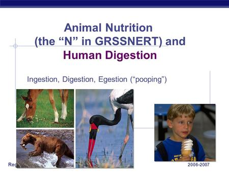 "Regents Biology 2006-2007 Animal Nutrition (the ""N"" in GRSSNERT) and Human Digestion Ingestion, Digestion, Egestion (""pooping"")"