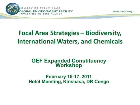 Focal Area Strategies – Biodiversity, International Waters, and Chemicals GEF Expanded Constituency Workshop February 15-17, 2011 Hotel Memling, Kinshasa,