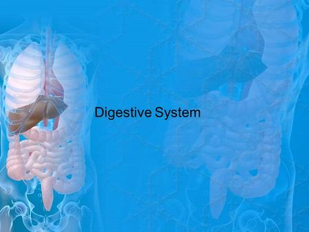 Digestive System. Getting Ready Activity Materials: (per pair) 1 piece of paper 1 pen Instructions: Going back and forth between you and your partner,