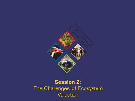 TEEB Training Session 2: The Challenges of Ecosystem Valuation.