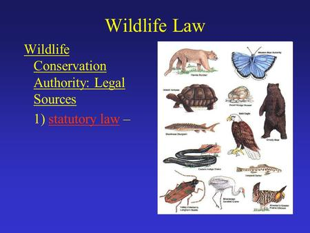 Wildlife Law Wildlife Conservation Authority: Legal Sources 1) statutory law –