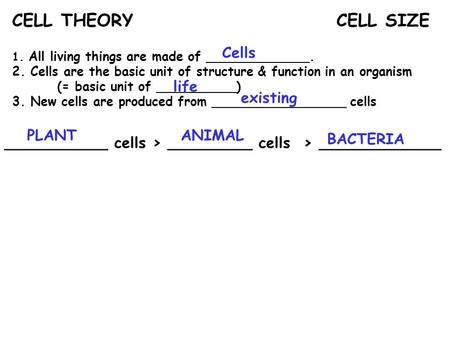 CELL THEORY CELL SIZE Cells life existing PLANT ANIMAL BACTERIA