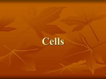 Cells. The Discovery of Cells Robert Hooke, and English scientist, discovered and named cells in 1665. He looked at thin slices of cork through a light.