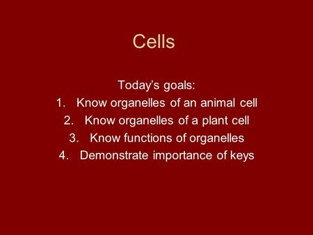 Cells Today's goals: 1.Know organelles of an animal cell 2.Know organelles of a plant cell 3.Know functions of organelles 4.Demonstrate importance of keys.
