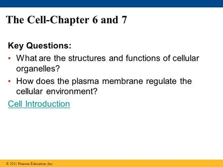 The Cell-Chapter 6 and 7 Key Questions: What are the structures and functions of cellular organelles? How does the plasma membrane regulate the cellular.