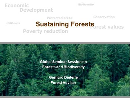 Global Seminar Session on Forests and Biodiversity