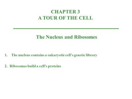 CHAPTER 3 A TOUR OF THE CELL The Nucleus and Ribosomes 1.The nucleus contains a eukaryotic cell's genetic library 2.Ribosomes build a cell's proteins.