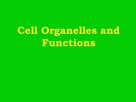 Cell Organelles and Functions. Nucleus Structure –Contains Chromatin (DNA) Nucleolus –Surrounded by Nuclear Envelope (w/ pores) Function: The Information.