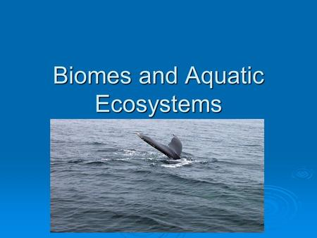 Biomes and Aquatic Ecosystems. Land Biomes  A biome is a particular physical environment that contains a characteristic assemblage of plants and animals.