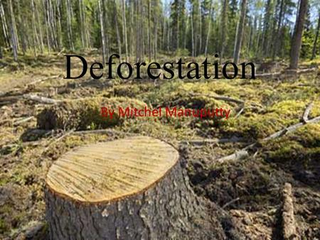Deforestation By Mitchel Manuputty.