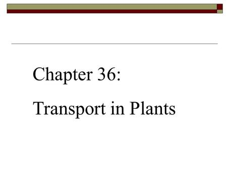 Chapter 36: Transport in Plants.