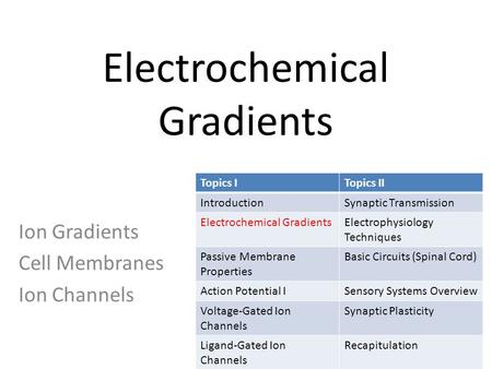 Electrochemical Gradients Ion Gradients Cell Membranes Ion Channels Topics ITopics II IntroductionSynaptic Transmission Electrochemical GradientsElectrophysiology.