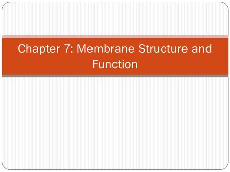 Chapter 7: Membrane Structure and Function. Selectively Permeable membranes allow some materials to cross them more easily than other which enables the.