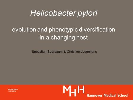 Helicobacter pylori evolution and phenotypic diversification in a changing host Asolina Braun 11.01.2010 Sebastian Suerbaum & Christine Josenhans.