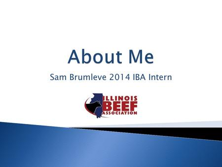 Sam Brumleve 2014 IBA Intern.  From DeWitt, IL  Grew up showing cattle from ages 8-19  Continued passion for cattle industry after my show career was.