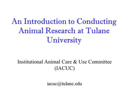 An Introduction to Conducting Animal Research at Tulane University Institutional Animal Care & Use Committee (IACUC)