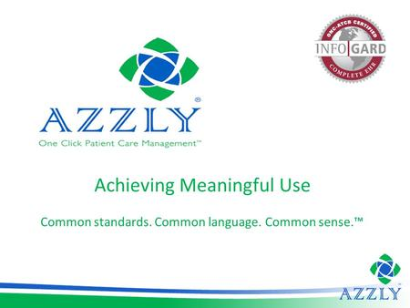 Achieving Meaningful Use Common standards. Common language. Common sense.™