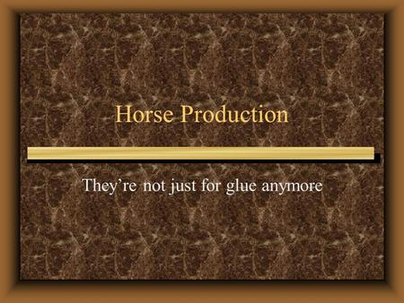 Horse Production They're not just for glue anymore.