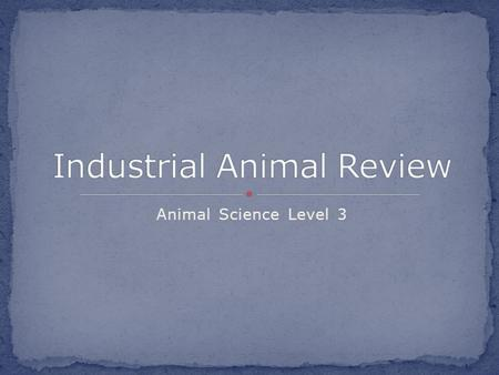 Animal Science Level 3. Fill in together ID species of economically important animals Understand animal management and husbandry techniques Outline industrial.