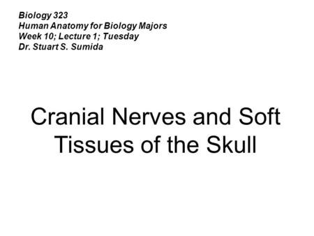 Cranial Nerves and Soft Tissues of the Skull