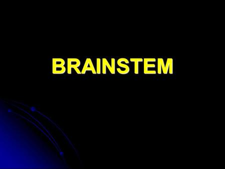 BRAINSTEM. BRAINSTEM In general, the brainstem is made up of a mixture of long fiber pathways, well- organized nuclei, and a network of cells which forms.