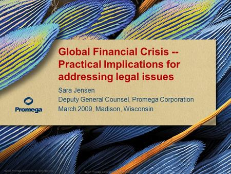 ©2008, Promega Corporation. All rights reserved. ©2007, Promega Corporation. All rights reserved. Global Financial Crisis -- Practical Implications for.