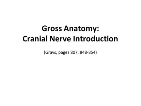 Gross Anatomy: Cranial Nerve Introduction (Grays, pages 807; )