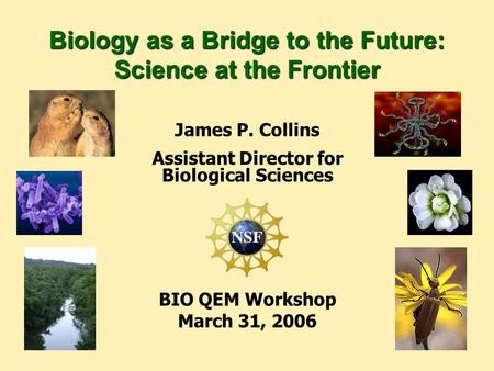 James P. Collins Assistant Director for Biological Sciences BIO QEM Workshop March 31, 2006 Biology as a Bridge to the Future: Science at the Frontier.