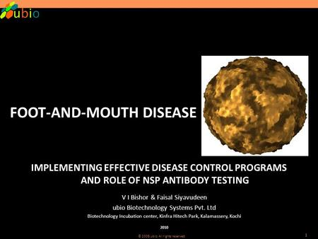 © 2008 ubio. All rights reserved. 1 FOOT-AND-MOUTH DISEASE IMPLEMENTING EFFECTIVE DISEASE CONTROL PROGRAMS AND ROLE OF NSP ANTIBODY TESTING V I Bishor.